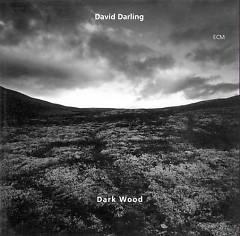 Dark Wood - David Darling