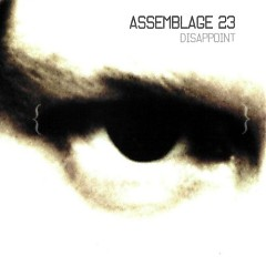 Disappoint-CDS - Assemblage 23