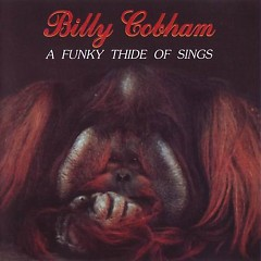 Crosswinds - A Funky Thide Of Sings - Billy Cobham
