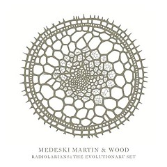 The Evolutionary Set - Radiolarians - Three - Medeski Martin & Wood