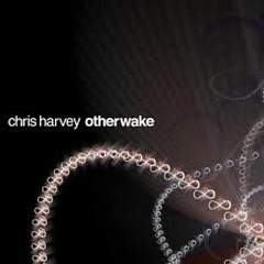 Otherwake (CD2) - Chris Harvey