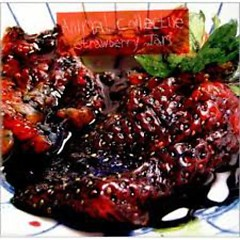 Strawberry Jam - Animal Collective