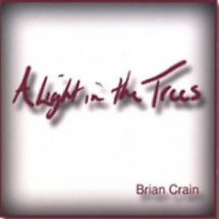 A Light In the Trees - Brian Crain