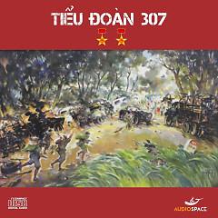Tiểu Đoàn 307 - Thụy Vân,Huy Anh
