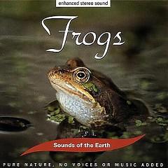 Frogs - David Sun