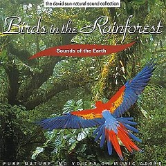Birds In The Rainforest - David Sun