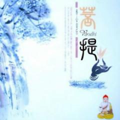 Bodhi - Yang Xin Music