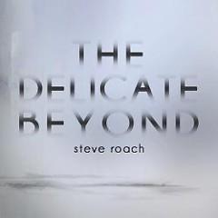 The Delicate Beyond - Steve Roach
