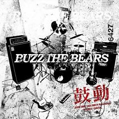 鼓動 (Kodou)  - BUZZ THE BEARS