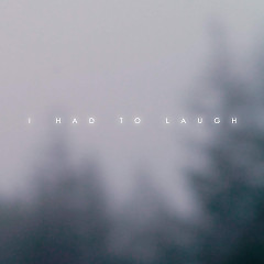I Had To Laugh (Single) - Kan Wakan