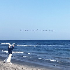 20160126 (Single) - O.venz