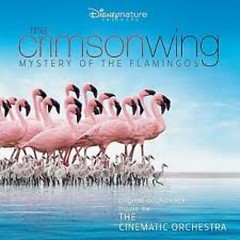 The Crimson Wing : Mystery Of The Flamingos