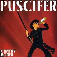 Cuntry Boner - Puscifer