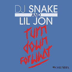 Turn Down For What (Single) - DJ Snake,Lil Jon