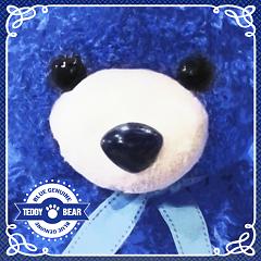 Teddy Bear - Bluegenuine