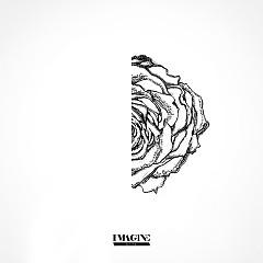 White Rose (Single) - Ryan