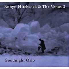 Goodnight Oslo