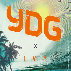 YDG Series Vol.2 Jump Down - YDG