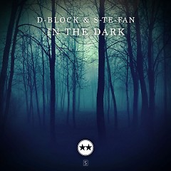 In The Dark (Single) - D-Block, S-te-Fan