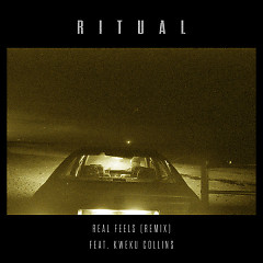 Real Feels (R I T U A L Remix) (Single) - R I T U A L, Kweku Collins