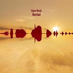 Aerial - Sky Of Honey (CD2)