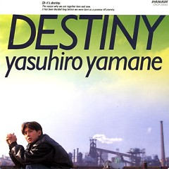 DESTINY -夢を追いかけて- (DESTINY -Yume wo oi Kakete-)