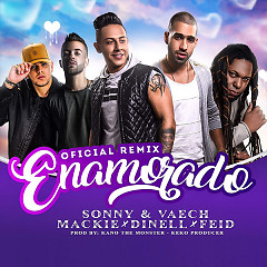 Enamorado (Remix) (Single)