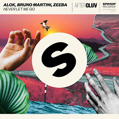 Never Let Me Go (Single) - Alok, Bruno Martini, Zeeba