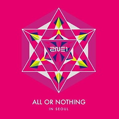 2014 2NE1 WORLD TOUR LIVE 'ALL OR NOTHING In SEOUL'