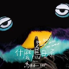 什么鸟日子 / Ngày Quái Quỷ Gì - Vi Lễ An