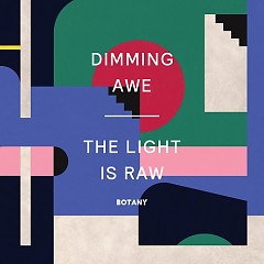 Dimming Awe, The Light Is Raw