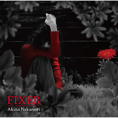 Fixer -While The Women Are Sleeping-