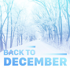 Back To December - Various Artists