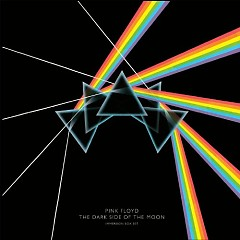 The Dark Side Of The Moon (Immersion Box Set) (CD3) - Pink Floyd