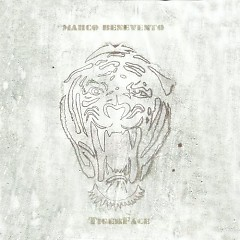 TigerFace - Marco Benevento