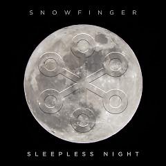 A Sleepless Night (Single)