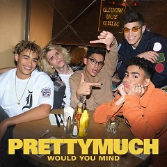 Would You Mind (Single) - PRETTYMUCH