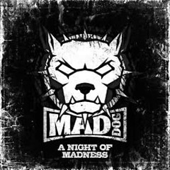 A Night Of Madness - DJ Mad Dog