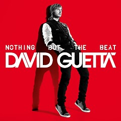 Nothing But The Beat (US Edition)