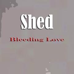 Bleeding Love - Shed