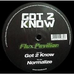 Got 2 Know l Normalize - Flux Pavilion