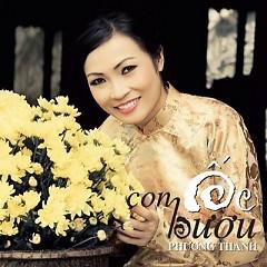 Album Con Ốc Bươu - Phương Thanh
