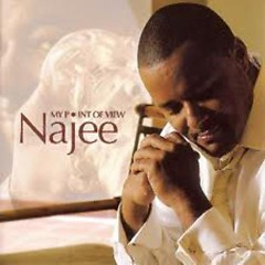 My Point Of View - Najee