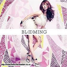 Blooming Mix