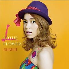 LOTUS FLOWER - SHANTI