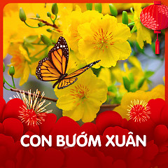 Con Bướm Xuân - Various Artists