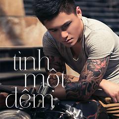 Album Tình Một Đêm - Vũ Duy Khánh Remix -