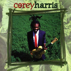 Greens From The Garden (CD1) - Corey Harris