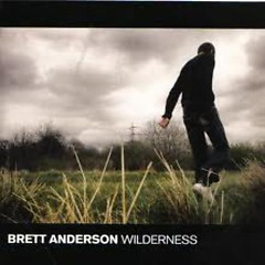 Wilderness - Brett Anderson
