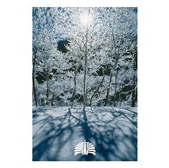 空が鳴っている/女の子は誰でも (Sora ga natteiru / Onna no ko wa dare de mo) - Tokyo Jihen